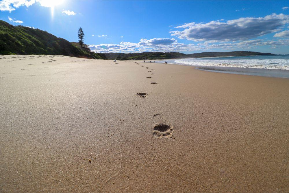 illaroo-catherine-hill-bay-beach